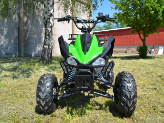 ATV Raptor 110ccm